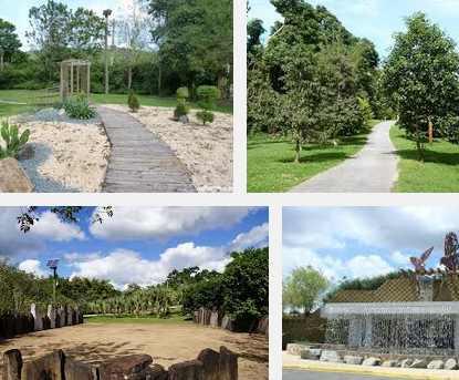 imagenes del jardin botanico de caguas en puerto rico