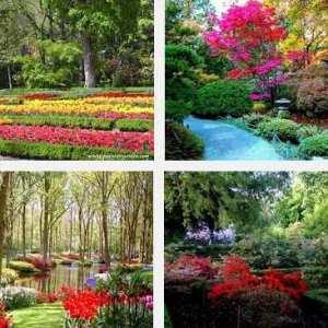 6 motivos para visitar el jard n bot nico de caguas miotip for Actividad de perros en el jardin botanico de caguas