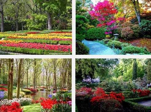 4 lugares que visitar en el jardín botánico