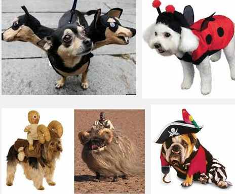 ideas de disfraces caninos