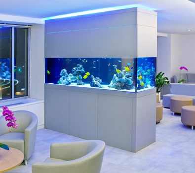 pescera muy grande en un hogar moderno