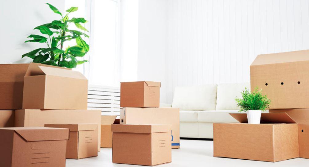 cajas todos los tamaños para mudanzas